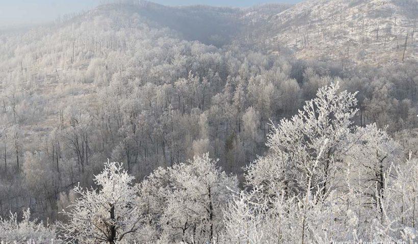 Самарская Лука в начале декабря