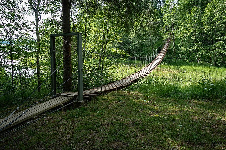 Большая Валдайская тропа. Висячий мост