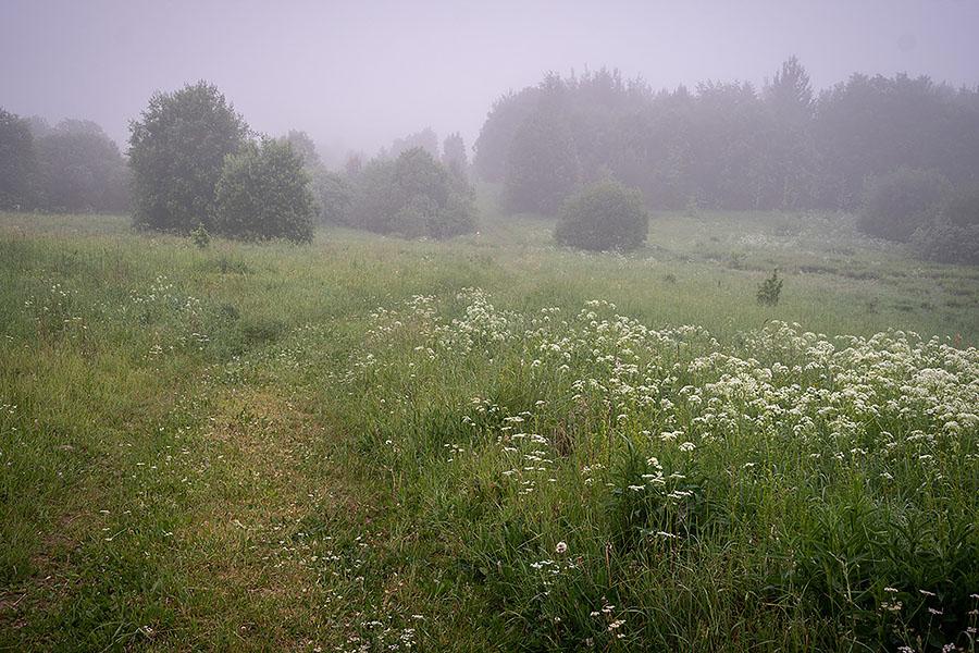 Большая Валдайская тропа. Начало
