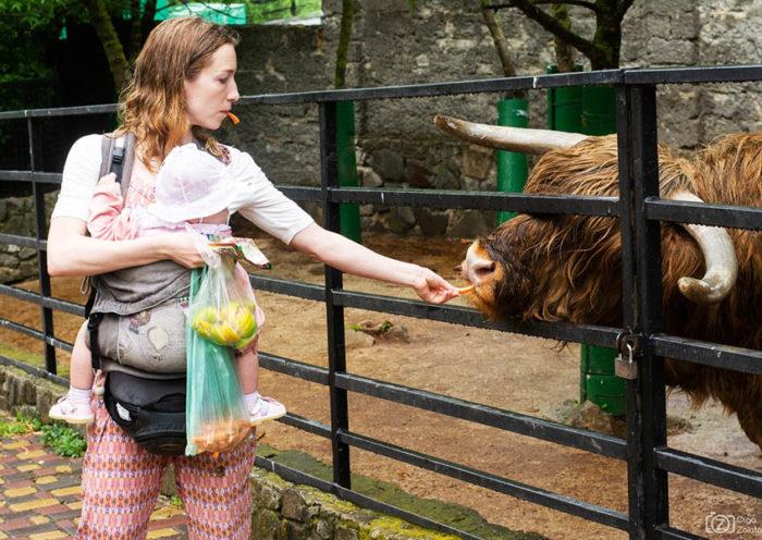 С детьми в Крыму. Ялтинский зоопарк